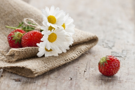 Daisies and strawberries photo