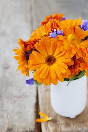 Bouquet of orange flowers Stock Photo