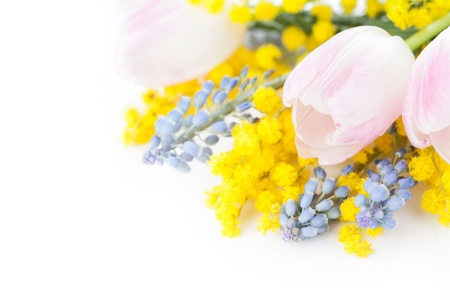 Bouquet of tulips, mimosa and muscari flowers on white