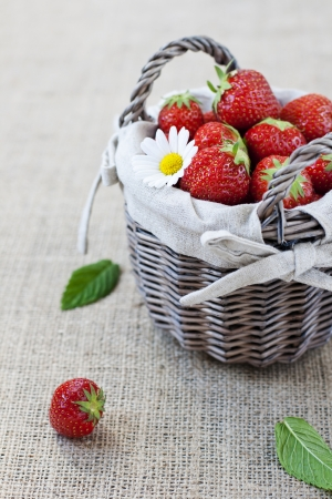 Fresh strawberries and a daisy in basket on sackcloth
