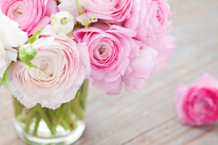 White and pink ranunculus  buttercup  in vase on wooden background