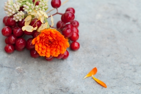 guelder: Autumn bouquet with calendula and guelder rose