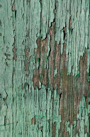 grundge: Old painted wood texture, background