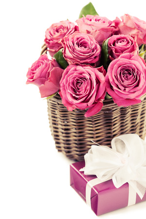 Bouquet of beautiful pink roses on white background, toned