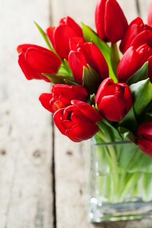 Valentines day concept:  bunch of red tulips
