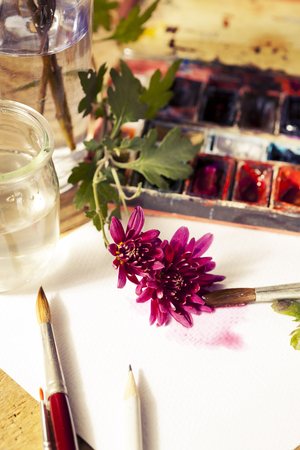 paint box: Watercolor paint box, flowers and brushes for painting? toned