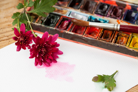 paint box: Watercolor paint box, flowers and brushes for painting