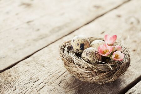 quail nest: Easter concept: nest with quail eggs and flowers