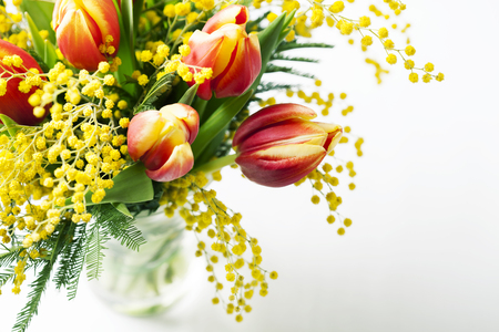 Bright spring bouquet of tulips and mimosa flowers on white Stock Photo