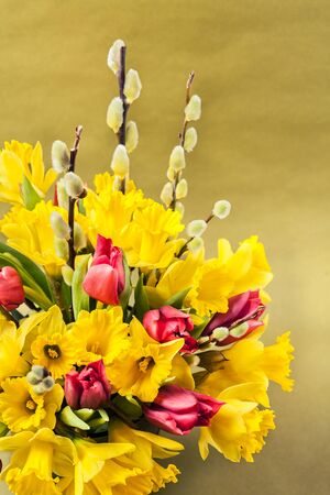 Tulips, willow and daffofils. Easter bouquet on ochre yellow background