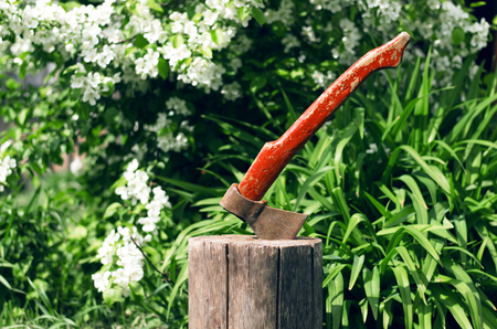 Axe in stump. Chopping wood concept.