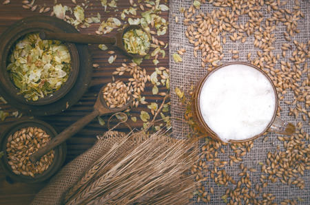 Cold foam beer with malt grain, green hop leaves in the pots and rye ears on burlap cloth on brown wooden table background. Фото со стока