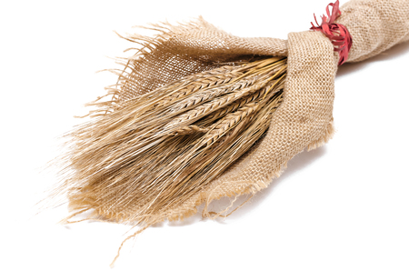 A bouquet of rye ears wrapped in sackcloth isolated on white background.
