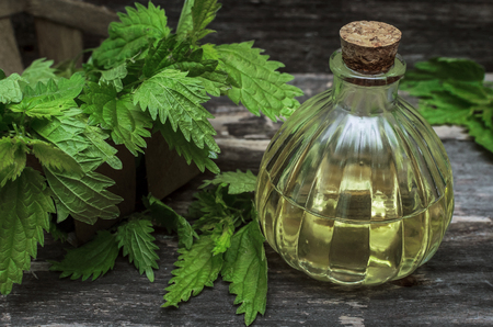 Nettle essential oil. Naturopathy. Herbal medicine.