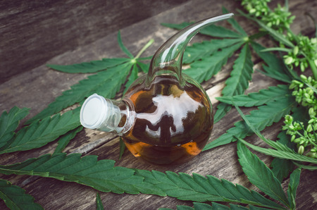 Cannabis essential oil in the vial. Herbal medicine. Naturopathy. Banque d'images