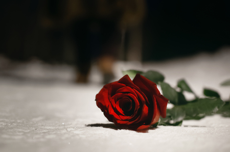 Red rose flower laying on the snow covered road in a winter night park and walking away woman silhouette. Failed date or broken heart concept.
