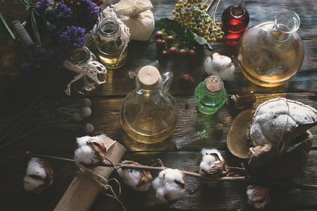 Herbal medicine essential oil and various dry herb on a table. Witchcraft. Witch doctor concept background. Reklamní fotografie