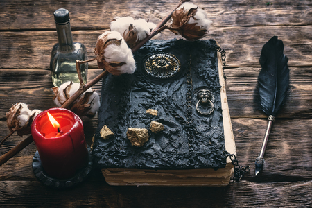 Branch of cotton tree and book of magic on a brown wooden table background.