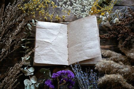 Various dried plants and herbs and a blank page recipe book mock up on a wooden table background with copy space. Herbal medicine.