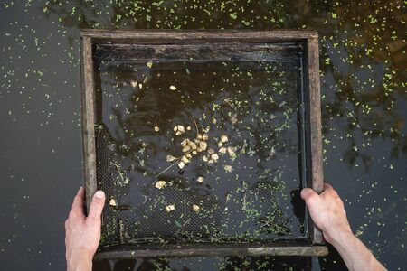 Sifting soil in water through the grate in search of the gold concept.
