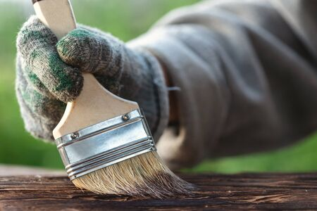 The carpenter is dyeing a wooden board by a brush in his hand with a mordant paint.