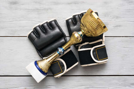 Boxing gloves and golden award trophy on the gray flat lay background.