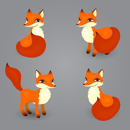 vector set of red mischievous cunning fox with a red tail in different poses isolated on a gray background