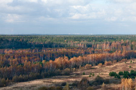 Autumn landscape in the early morning. Moscow on the horizon, Russia. Stok Fotoğraf