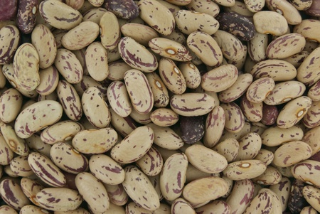 Coloured beans as a background Stock Photo - 9809994