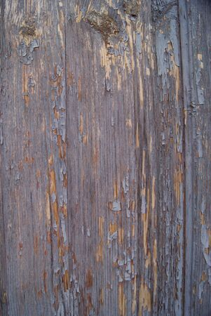 Wornout wood texture Stock Photo - 10549909