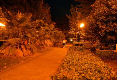 passerby: Summer park at night: Tsvetnoy Boulevard in Sochi, Russia