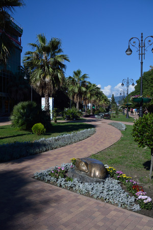 Alley in the central park of Sochi, Russia, next to the sea port