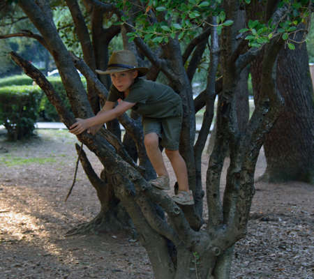 khaki: A handsome boy climbing the tree in khaki clothes