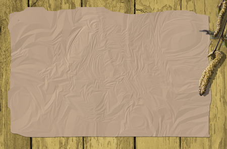 ruffle: Wooden background with ruffle paper and a willow branch