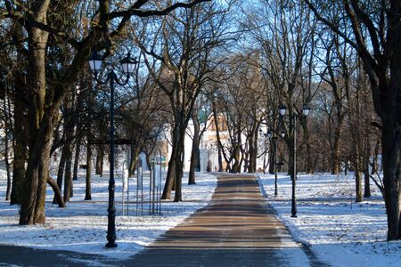 CHERNIHIVUKRAINE - JANUARY 08 2015: alley in the Val park, with the Cathedral and the tourists in the far
