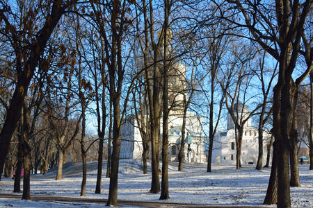 collegium: CHERNIHIVUKRAINE - JANUARY 08 2015: alley in the Val park, the Collegium, in winter