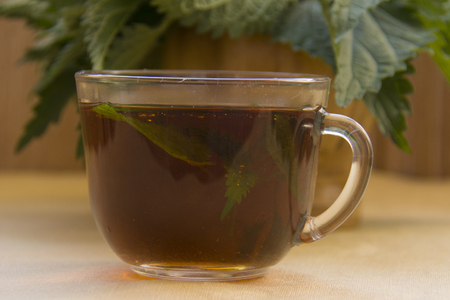 glass cup of hot nettle tea, with a bundle of nettle leaves