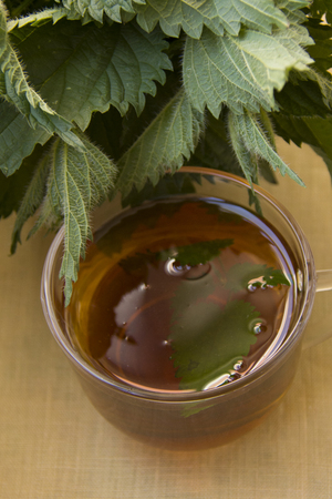 warm tea with nettle in the glass cup