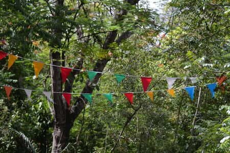 small riangular flags in the park, with leaves behind