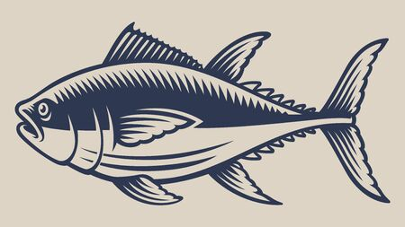 Vintage vector illustration with a tuna on a white background