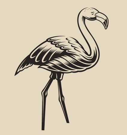 Vector illustration of a flamingo on a white background