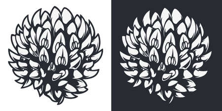 Vector illustration of a wildflower (meadow onion) in two versions.