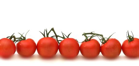 Tomatoes Stock Photo - 551825