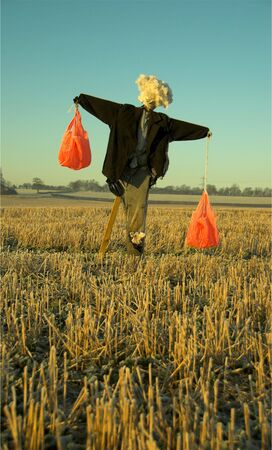 Scarecrow in early morning sunlight Stock Photo - 2236225