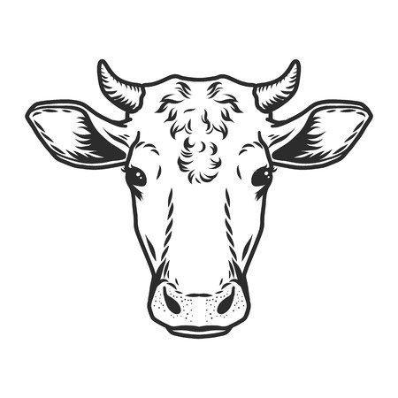 Cow head icon. Outline nand drawn illustration of cow head vector icon for web Çizim