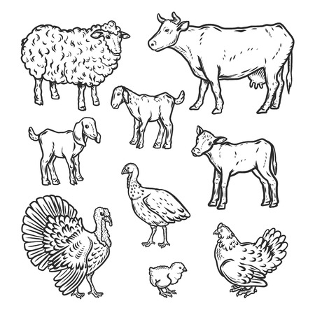 Farm animals detailed icon set. Outline nand drawn illustration of 9 farm animals detailed vector icons for web