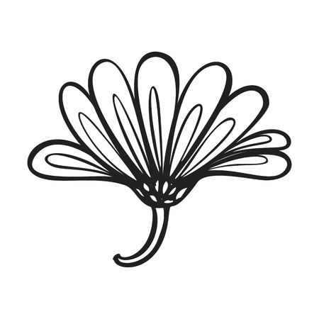 Herb calendula icon. Simple illustration of herb calendula vector icon for web design isolated on white background Ilustrace