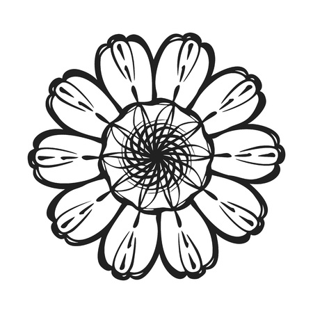 Top view calendula icon. Simple illustration of top view calendula vector icon for web design isolated on white background