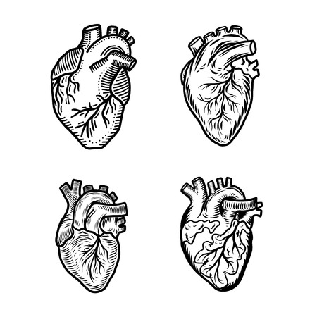Heart human icon set. Hand drawn set of heart human vector icons for web design
