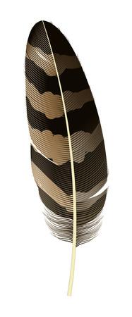 Boho feather icon. Realistic illustration of boho feather vector icon for web design isolated on white background